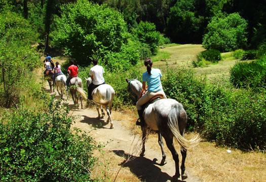 Bale - Horseback riding