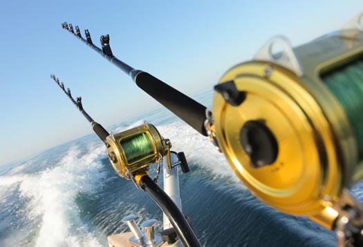 Bale - La pesca